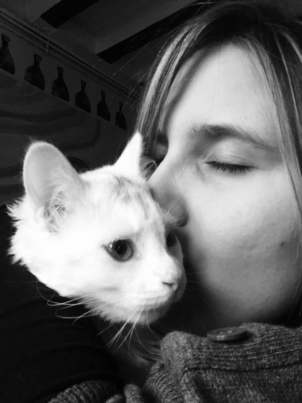 Catsitter à domicile